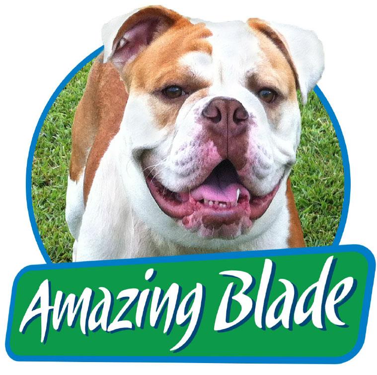 Amazing Blades Landscaping